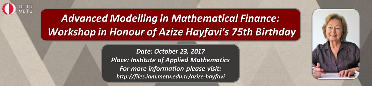 A Workshop in Honour of Azize Hayfavi's 75th Birthday